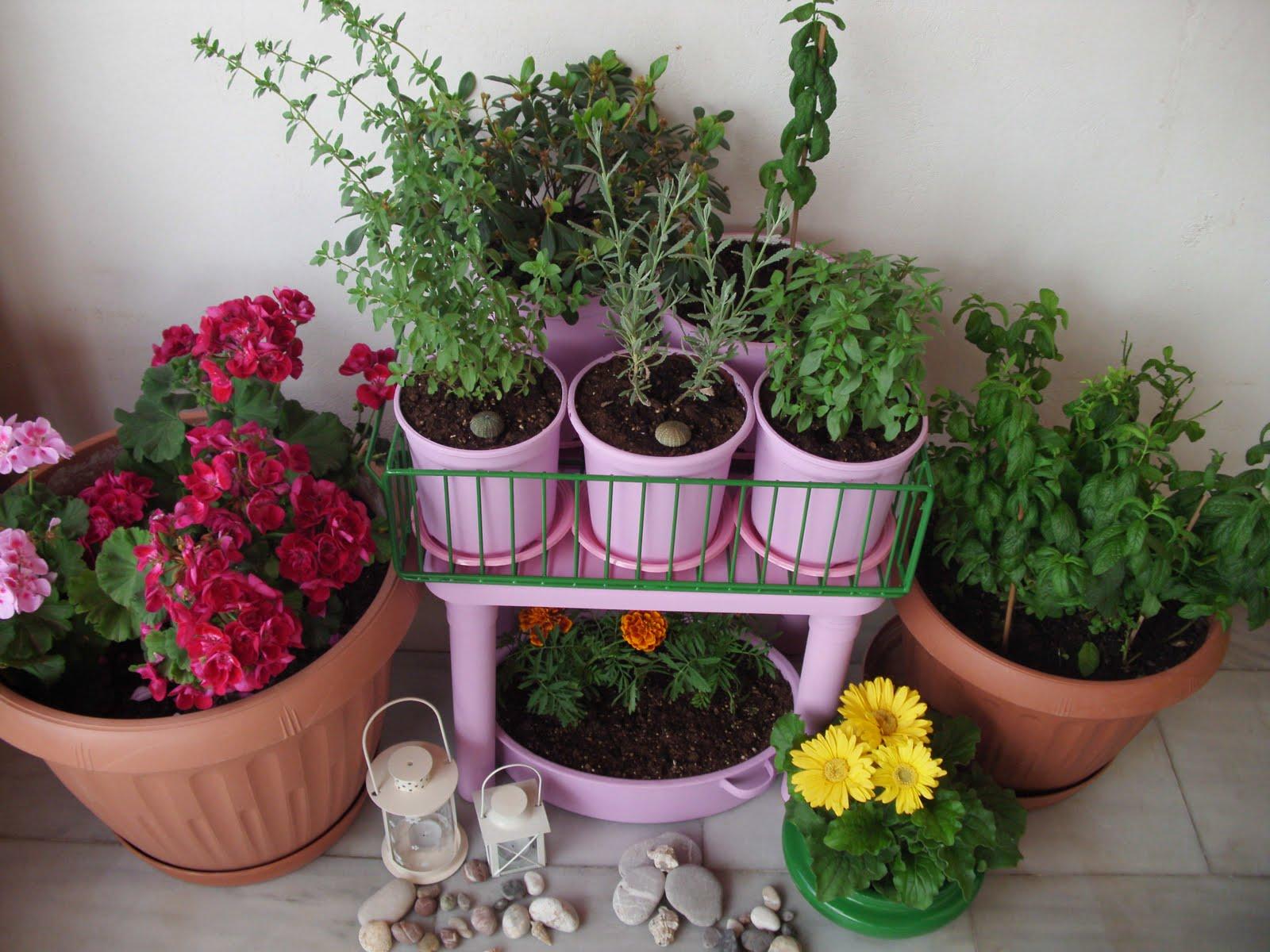 Φύτεψε λουλούδια και μυρωδικά στο μπαλκόνι σου
