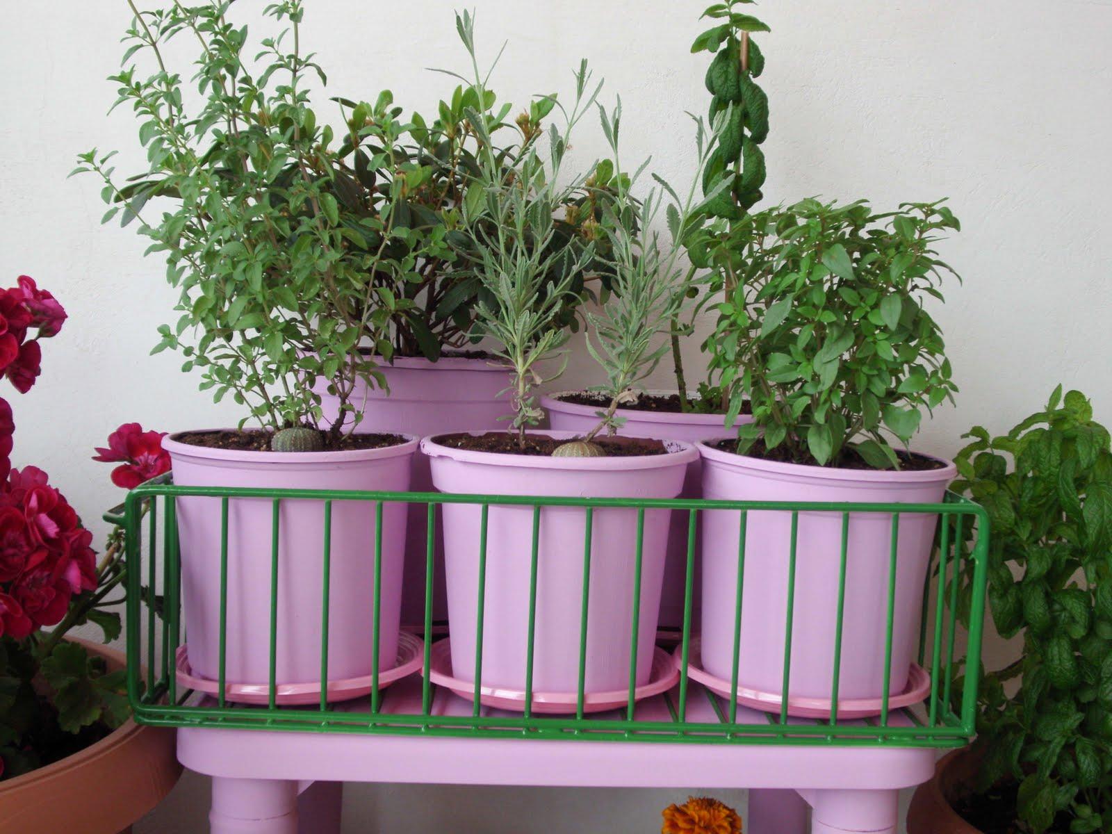 Πως να φτιάξετε μια όμορφη γωνιά στο μπαλκόνι σας με λουλούδια και μυρωδικά