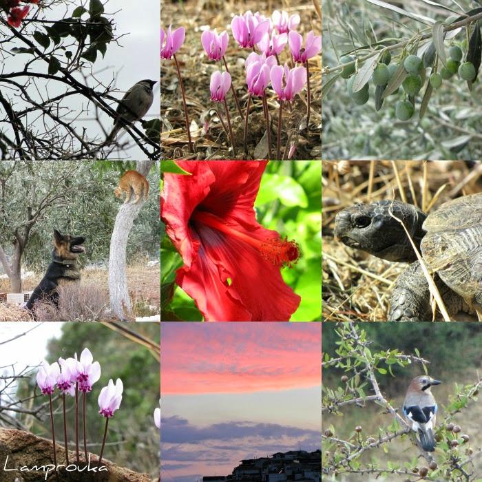 Φθινόπωρο εικόνες Λαμπρούκα.