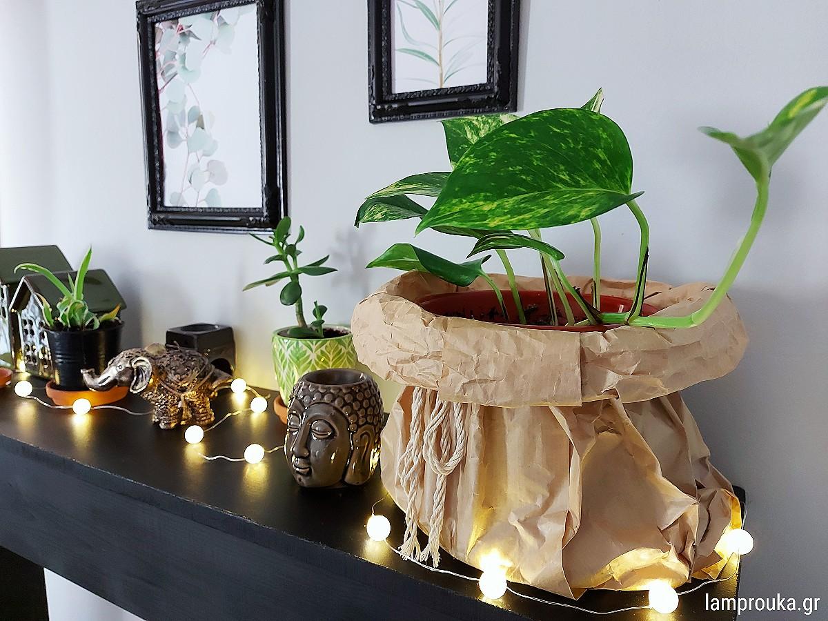Διακόσμηση σε ράφι με φυτά