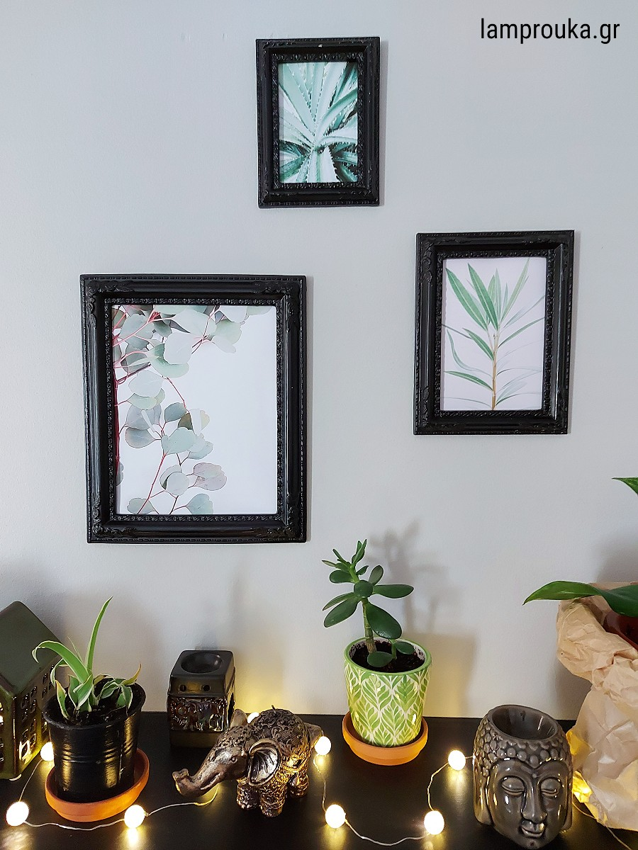Ράφι με φυτά και διακόσμηση στον τοίχο με κάρδα
